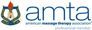 AMTA logo Professional_4C